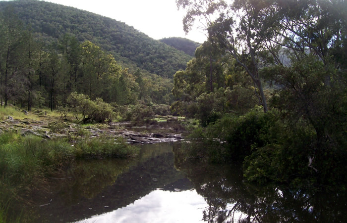 Plenty of watering holes can be found on Tenterfield Creek